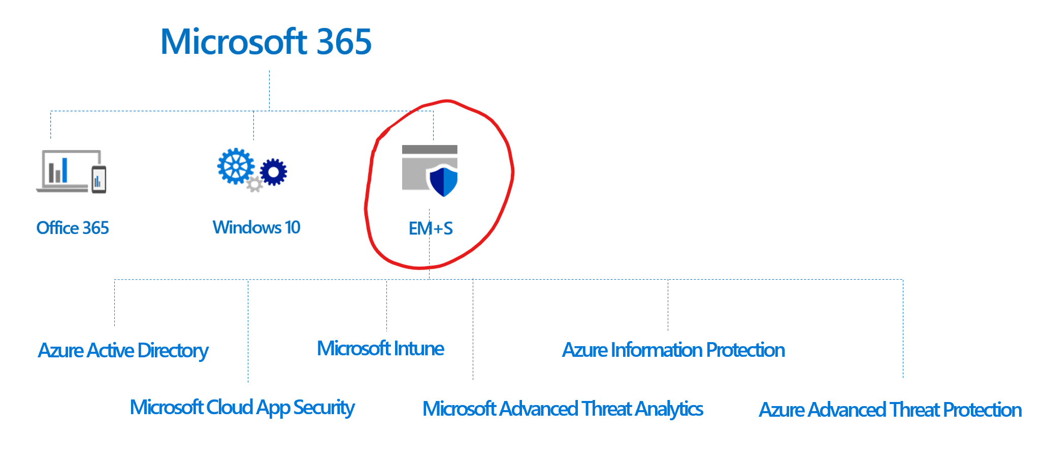 Microsoft EMS Features